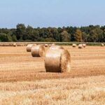 the future of rural Norfolk